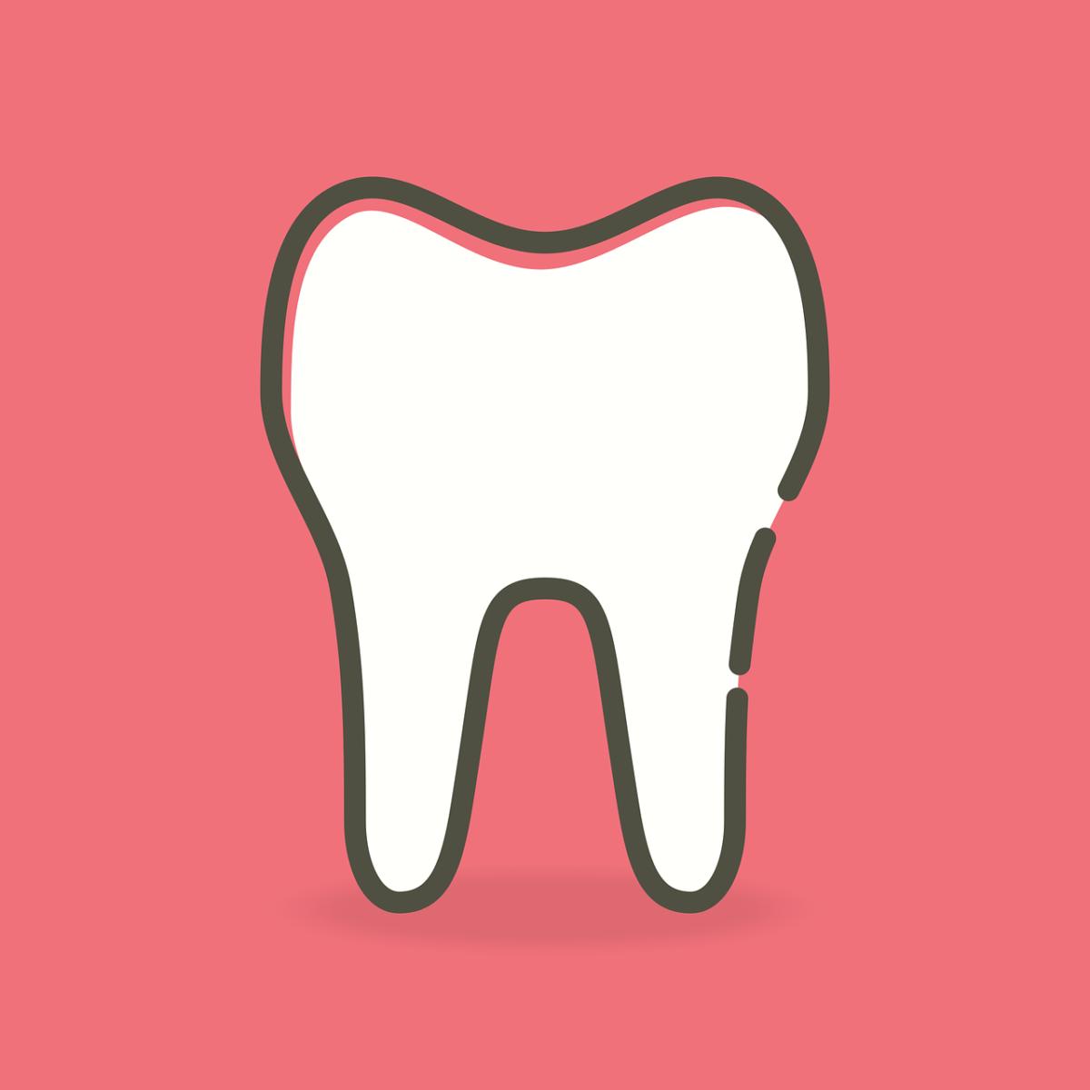 Śliczne urodziwe zęby oraz godny podziwu prześliczny uśmieszek to powód do dumy.